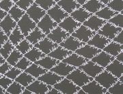 Cyclone Fence (canvas detail)
